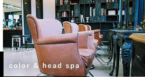 color & head spa
