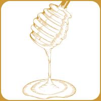 Honey Brown ハニー、爽やかな黄金の輝き